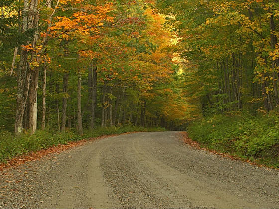 peacefulroad.jpg