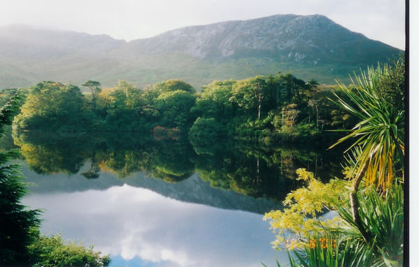 peacefulabby.jpg