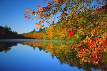 peacefulriver.jpg